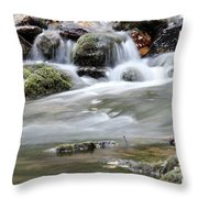 Creek With Rocks Spring Scene Throw Pillow