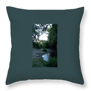 Creekbed Throw Pillow