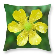 Creeping Buttercup Throw Pillow