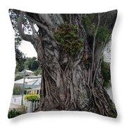 Creepy Tree Throw Pillow