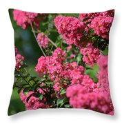 Crepe Myrtle Blossoms 2 Throw Pillow