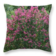 Crepe Myrtle Tree 2 Throw Pillow