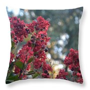 Crepe Myrtle Tree Blossoms Throw Pillow