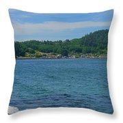 Crescent Beach Center Panoramic Throw Pillow