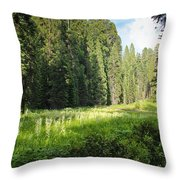 Crescent Meadow In Sequoia Throw Pillow