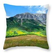 Crested Butte Aspens Throw Pillow