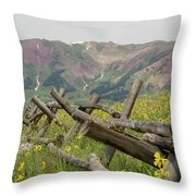 Crested Butte Color Throw Pillow