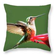 Crested Butte Hummingbird Throw Pillow by Scott Cordell