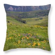 Crested Butte Valley Throw Pillow