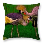 Crested Cranes Throw Pillow
