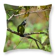 Crested Finchbill 2 Throw Pillow