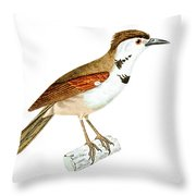 Crested Rustic 2 Throw Pillow
