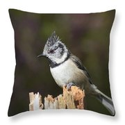 Crested Tit Throw Pillow