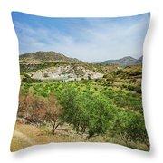 Crete Olive Grove Throw Pillow
