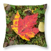 Crimson And Clover Throw Pillow