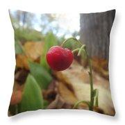 Crimson Berry Throw Pillow