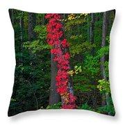 Crimson Creeper Throw Pillow