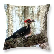 Crimson Highlights Throw Pillow