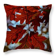 Crimson Oak Throw Pillow