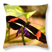 Crimson Patched Longwing 2 Throw Pillow