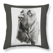 Crinkle Throw Pillow