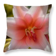 Crinum Lilies Throw Pillow