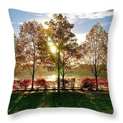 Crisp Autumn Day Throw Pillow