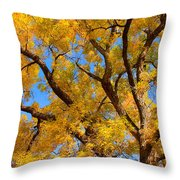Crisp Autumn Day Throw Pillow