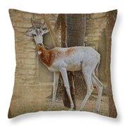 Critically Endangered Dama Gazelle Throw Pillow