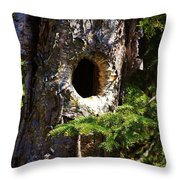 Critter Home Throw Pillow