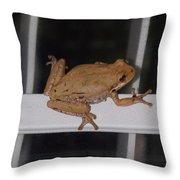 Critters 8-1 Throw Pillow