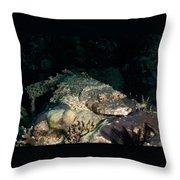 Crocodile Fish On Coral Throw Pillow