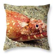 Crocodile Snake Eel Throw Pillow