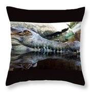 Crocodile X2 Throw Pillow