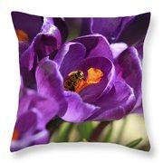 Crocus And Bee Throw Pillow