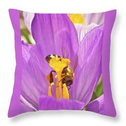 Crocus And The Bee Throw Pillow