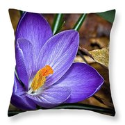 Crocus Emerging Throw Pillow