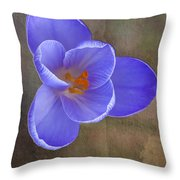 Crocus Focus Stacked 3 Throw Pillow