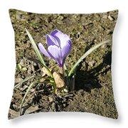 Crocus Throw Pillow