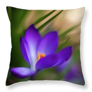 Crocus Light Throw Pillow