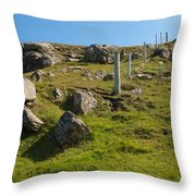 Crofters Fence Throw Pillow