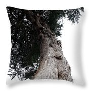 Crone Tree Throw Pillow