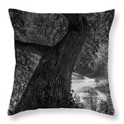 Crooked Oak Black And White Throw Pillow