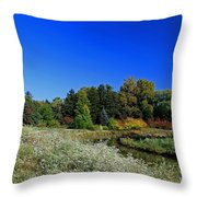 Crosby Throw Pillow