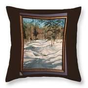 Cross Country Ski Trail Throw Pillow