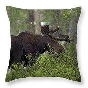 Cross Moose Throw Pillow