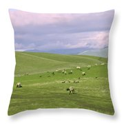Cross Road Sheep Throw Pillow