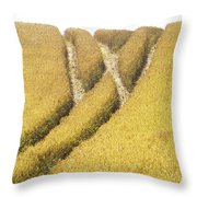 Crossed Lanes On Cornfield Throw Pillow