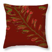 Crossing Branches 15 Throw Pillow