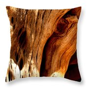 Crossing Texture  Throw Pillow
